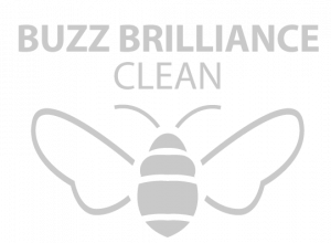Buzz_Brilliance_Logo-300x220